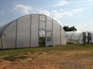 The plastic greenhouse gives farmers a chance to grow crops despite frost, rain, wind, or snow.