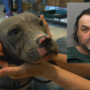 UPDATE: Man charged with animal cruelty after puppy thrown from car