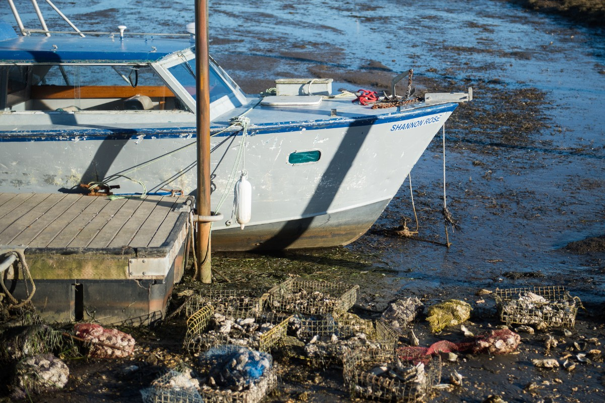 Driscoll's boat, named after his daughter, Rose. (Image: Chona Kasinger / Seattle Refined)