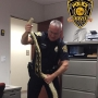Police show off 11-foot python found hiding in Florida man's car