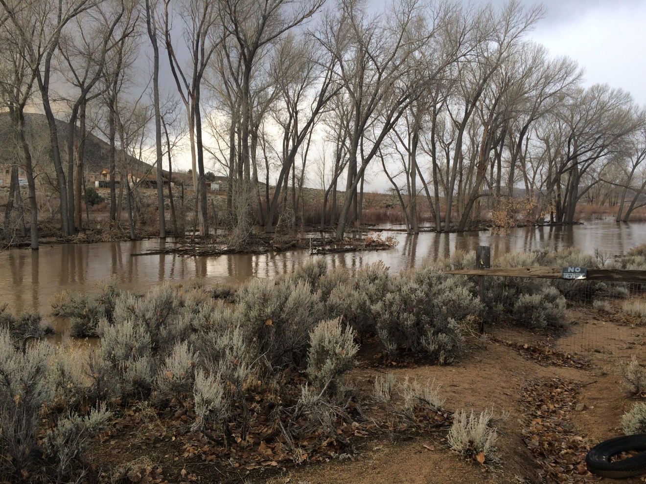 The Carson River hit 'Major Flood Stage' on Tuesday, Jan. 10.