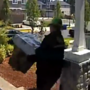 Police: Woman posing as FedEx driver stole packages off Happy Valley porch
