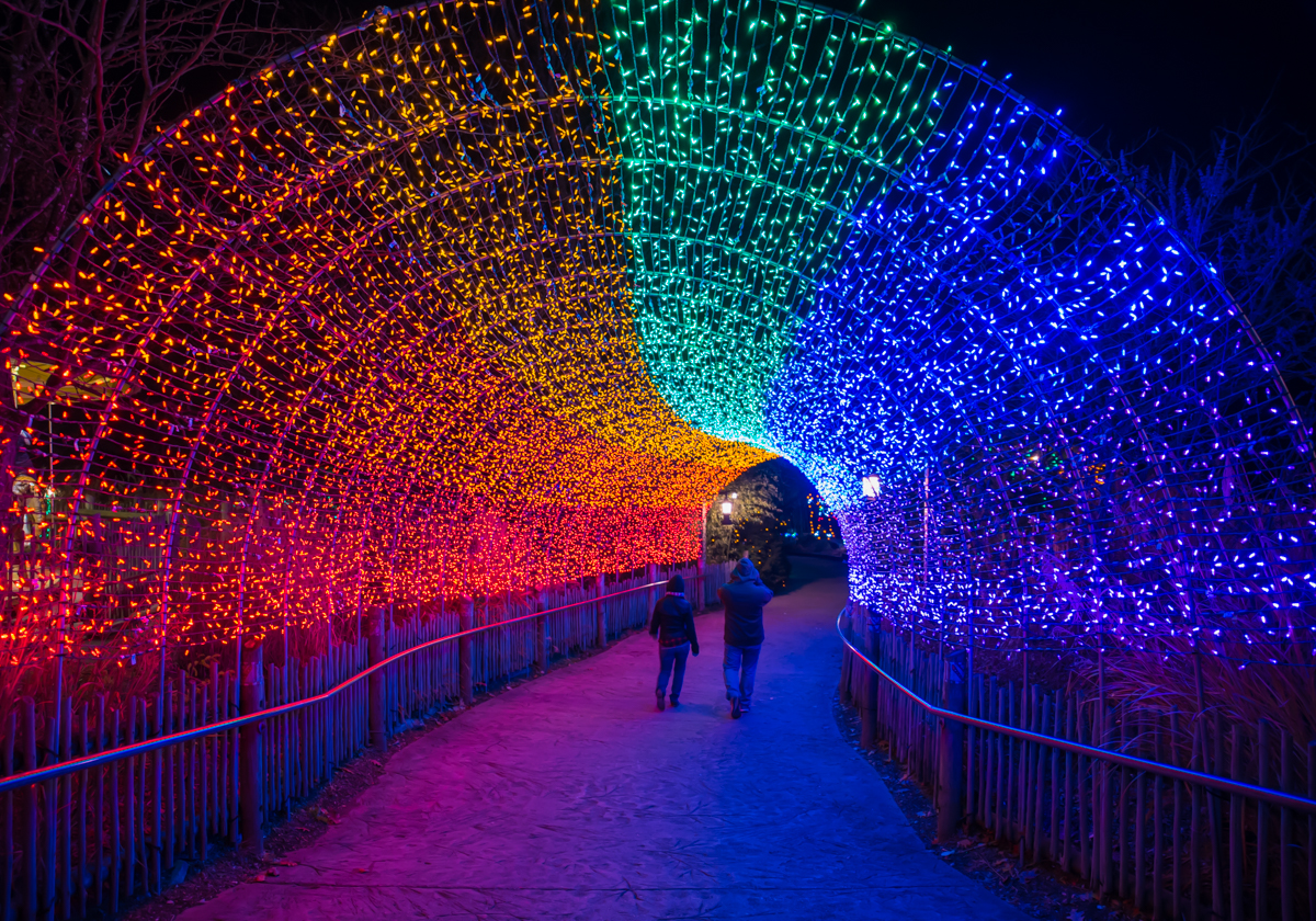 The 35th annual PNC Festival of Lights at the Cincinnati Zoo is on display from November 18 to January 1. The show features a total of 3 million light bulbs in 10 different colors on 120 thousand strings of lights throughout the zoo. / Image: Sherry Lachelle Photography // Published: 11.27.17