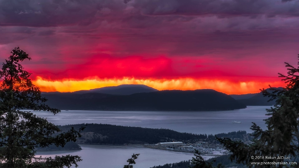 GALLERY: Gorgeous Northwest photos by KOMO's 'Legion of Zoom'