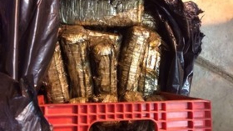 34 kilos of cocaine found during drug bust, 6 arrested | WTTE