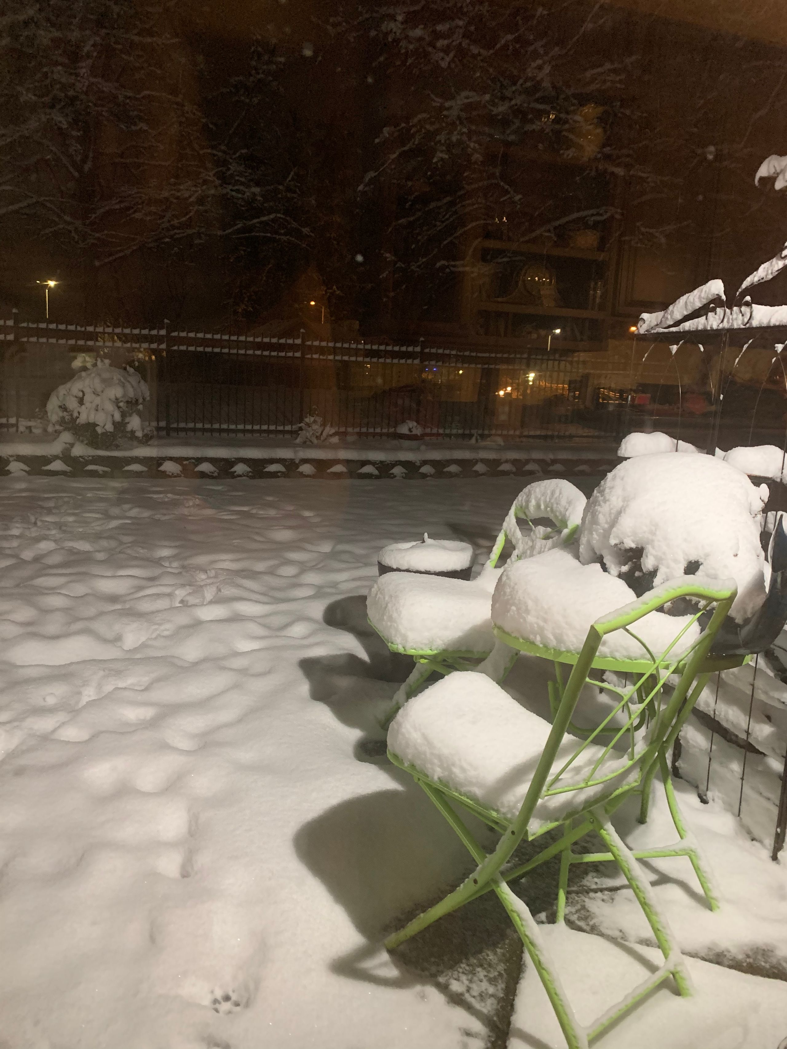 Snow in Olympia on Friday morning (Image: B. Carter / Chime In)