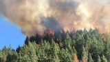 Gold Canyon Fire sparks near Selma, Level 3 evacuation in place