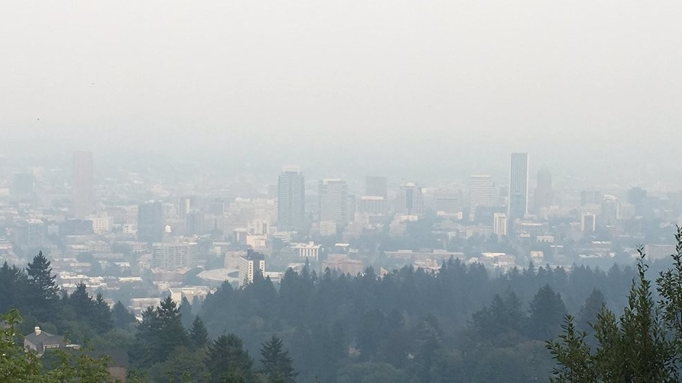 Air Pollution: Understanding the Problem and Ways to Help Solve It