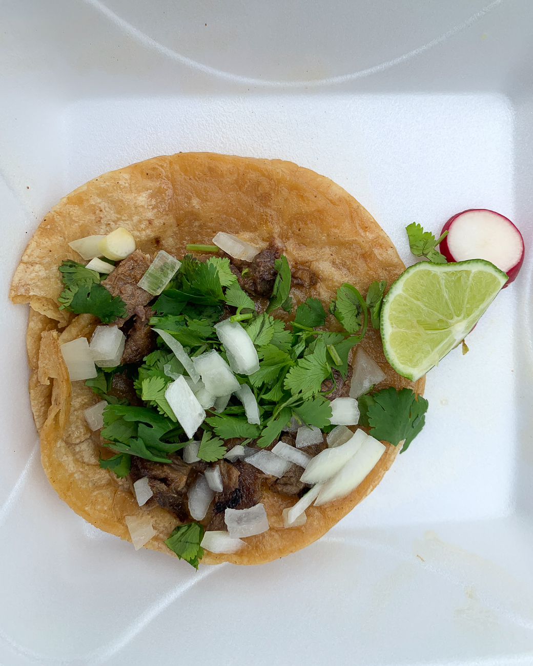 PLACE: Taqueria Yolandita / ADDRESS: 1881 Westwood Ave (Fairmount) / DESCRIPTION: You're going to want to hit Taqueria Yolandita on a nice day, as it's a small food truck and you'll be eating outside. They have a larger selection of options than I expected. I went with both the lengua (beef tongue) and the chicken tacos, and I was not disappointed. They had options for sour cream, lettuce, and tomato, but because I had been having so many delicious tacos with the simple cilantro and onion combo, I continued that trend (and continued to be sold on it). This spot is a little off the beaten path, but it's well worth the trek. / Image: Shawn Braley // Published: 5.28.19