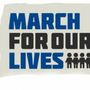 March For Our Lives sister march planned for downtown Charleston
