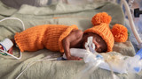 Babies in NICU dressed as pumpkins in adorable Halloween video