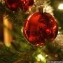 Complaints lead MoDOT to remove tree decorations