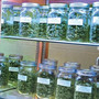 Doctors, pharmacists propose ban on smoking medical pot