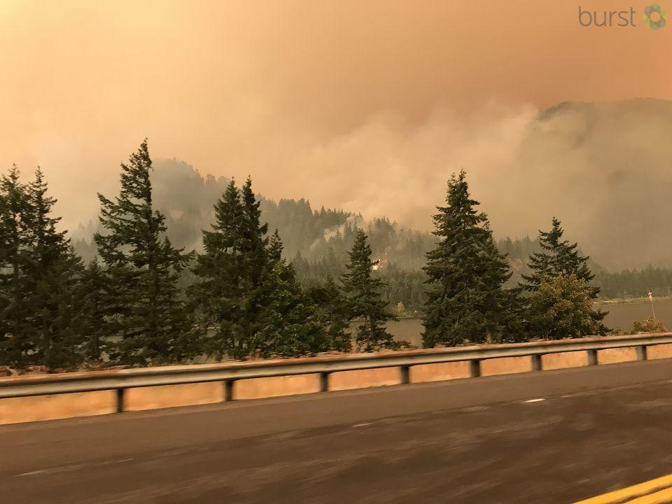 Do you have any photos of the Eagle Creek Fire? Submit them to KATU News through burst.com/katu