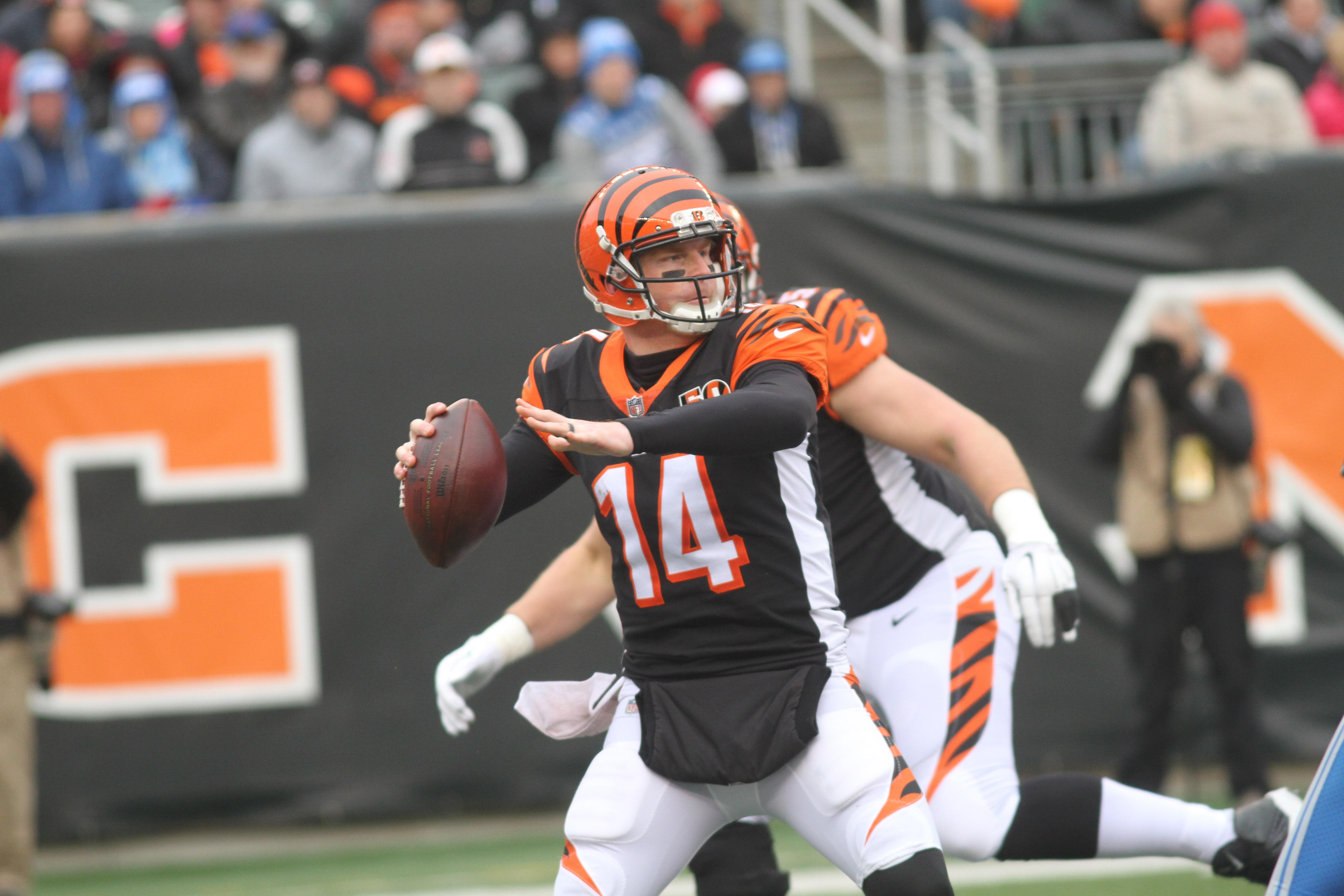 The Bengals eliminated the Lions from playoff contention Sunday at Paul Brown Stadium (WKRC/Tony Tribble)