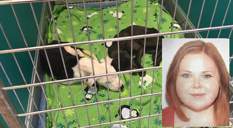 Kayla Dalton is the person the Henry County Sheriff's Office believes is responsible for dumping two young puppies in a landfill last summer (Henry County Sheriff's Office)
