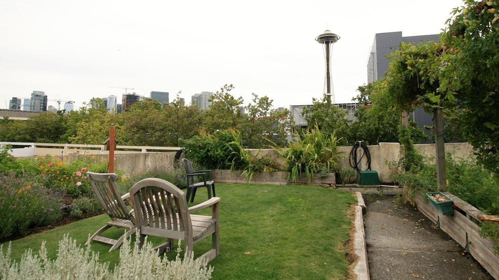 5 Hidden Green Spaces Near Downtown Seattle .