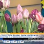 Dutch Connection floral show at George Eastman Museum