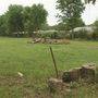 New vacant lot aims to help Springfield kids