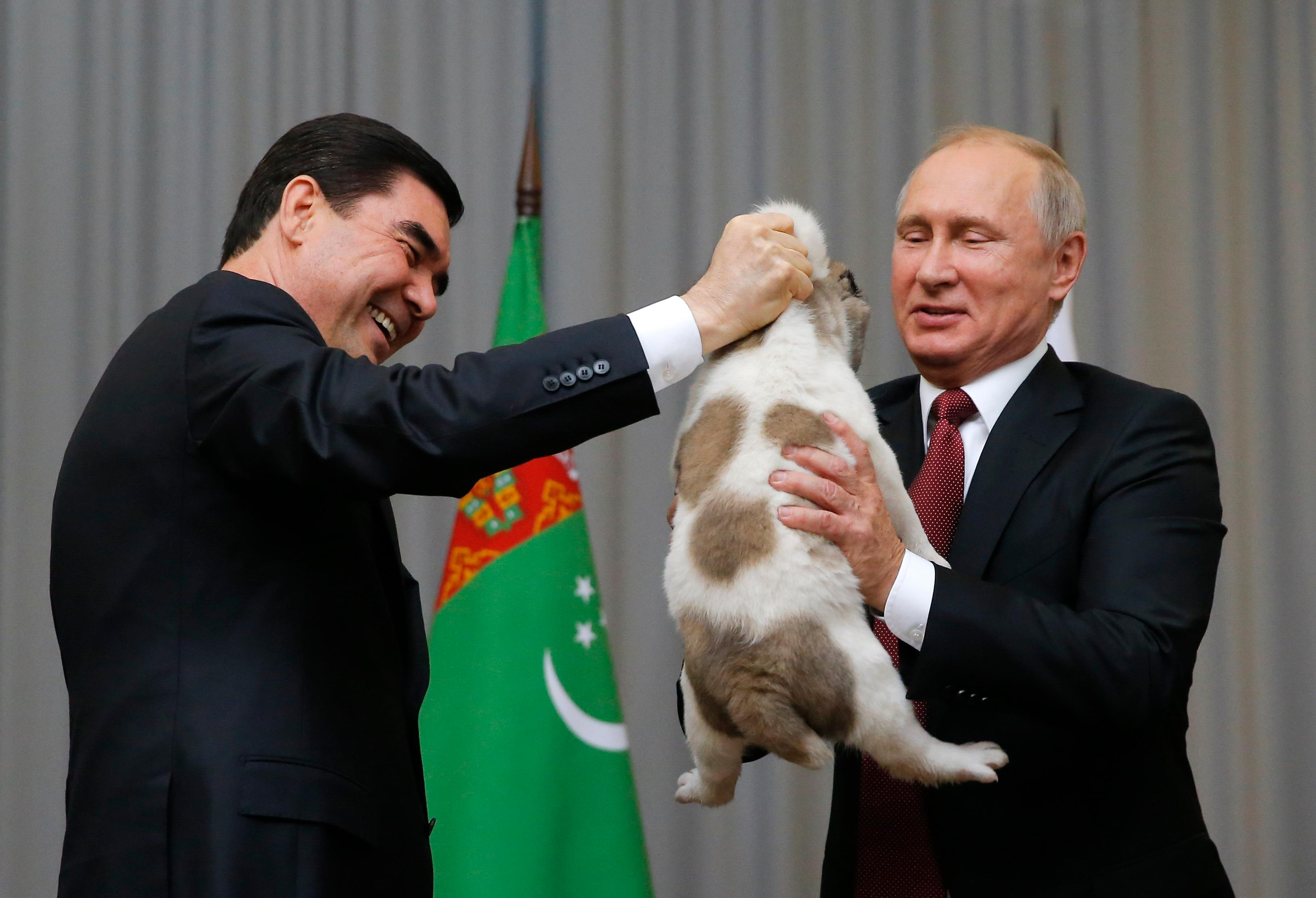 Turkmenistan's President Gurbanguly Berdymukhamedov, left, presents a puppy to Russian President Vladimir Putin during their meeting in the Bocharov Ruchei residence in the Black Sea resort of Sochi, Russia, Wednesday, Oct. 11, 2017. The presidents met at the sidelines of a summit of leaders of ex-Soviet nations in Sochi. (Maxim Shemetov, Pool Photo via AP)