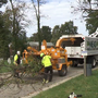 Arborists offer free help to veterans cemetary