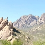 President Trump's executive order puts Organ Mountains under review