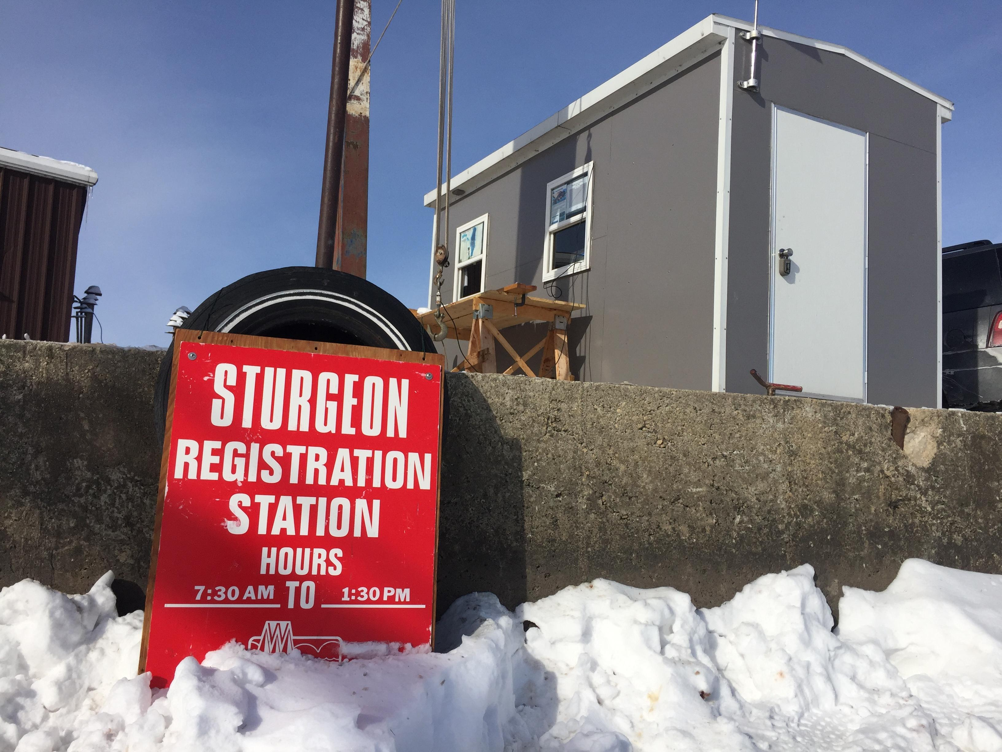 Sturgeon registration station at Wendt's on the Lake in Fond du Lac County, February 12, 2018 (WLUK/Eric Peterson)