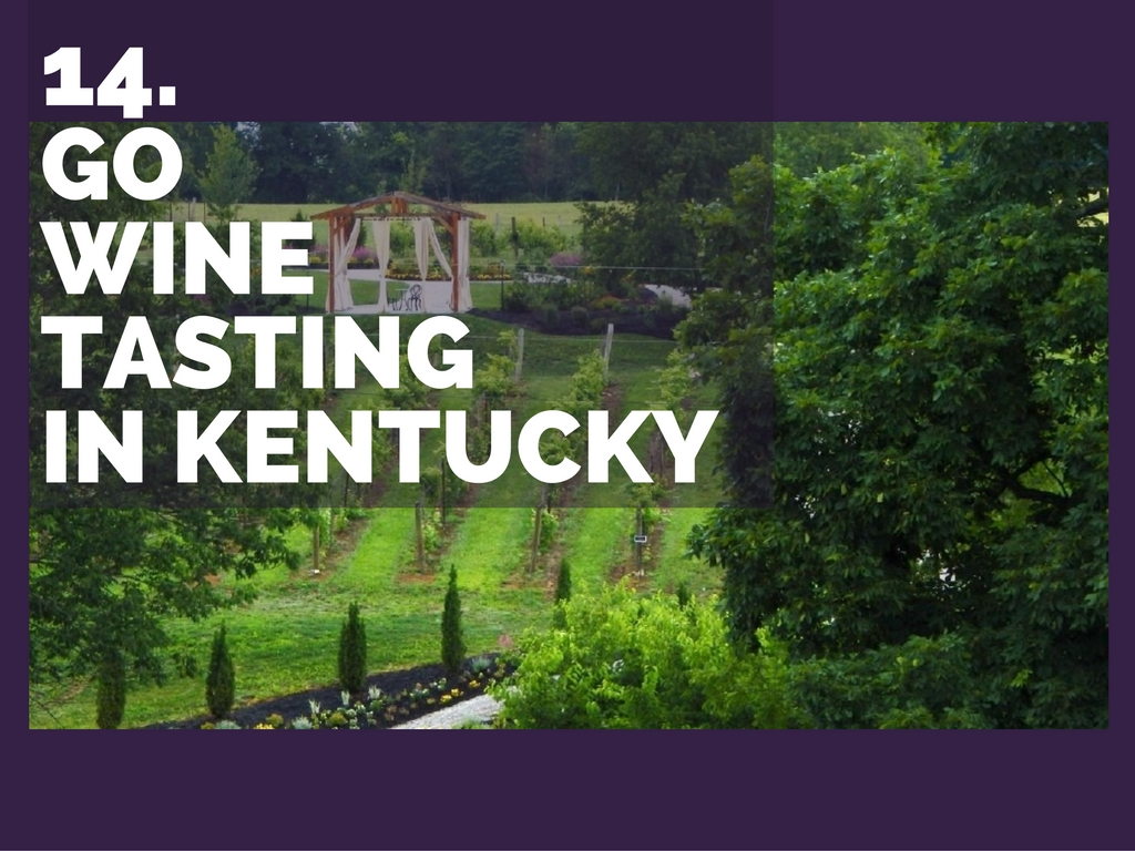 CINCY SUMMER BUCKET LIST ITEM #14: Go wine tasting in Kentucky / PICTURED: Brianza Gardens & Winery (14611 Salem Creek Rd., Crittenden, KY 41030) // IMAGE courtesy of Brianza Winery