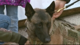 Local charity helps law enforcement fund K-9 programs