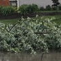 Metro storm cleanup in progress, more severe weather possible Wednesday afternoon