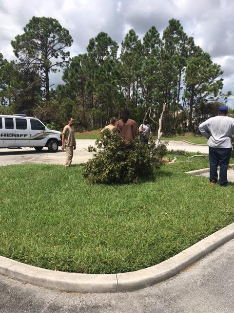 Inmate work crews help clean up city post Irma destruction. (SLCSO)