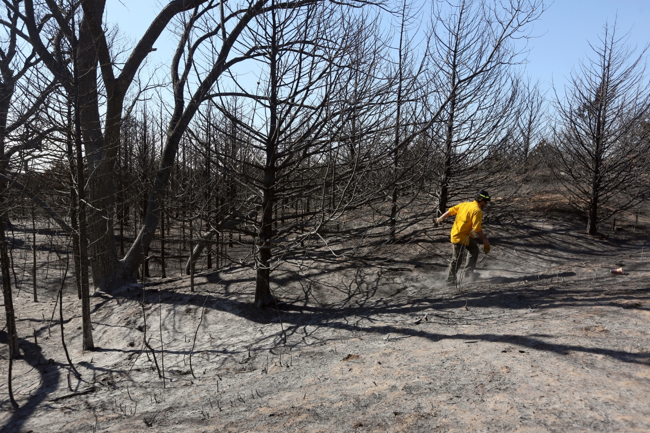 Travis Pohlman checks for hot spots in the trees along Dull Knife Drive in the Highlands community area north of Hutchinson, Kan., on Monday, March 6, 2017. Grass fires fanned by gusting winds scorched swaths of Kansas grassland Monday, forcing the evacuations of several towns and the closure of some roads, including a couple of short stretches of Interstate 70.  (Lindsey Bauman/The Hutchinson News via AP)
