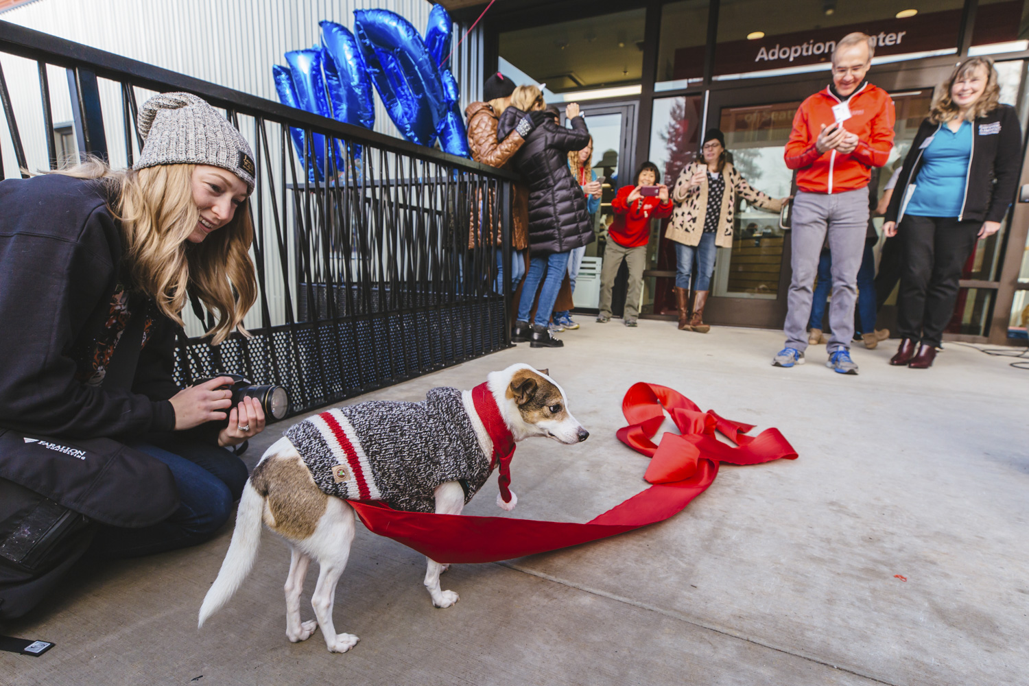 It's the grand opening of Seattle Humane's new home! The organization, established in 1897, embarked on a $30 million campaign to build a 57,000 square foot shelter to replace its aging facility. After 7 years of planning and fundraising, and nearly 2 years of construction, Seattle Humane is fully introducing their operating space to the pubic for the first time. There was everything from ribbon cutting, to a kitten obstacle courses, and a even a competition between our KOMO morning anchor team: Cayle Thompson, Kelly Koopmans and Ryan Yamamoto! (Image: Sunita Martini / Seattle Refined)