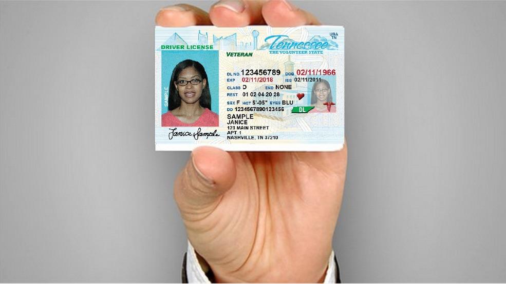 tn driver license reinstatement cost