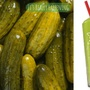 Sonic releasing new pickle juice slushie on Monday