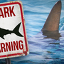 Wells beaches cleared after reported shark sighting