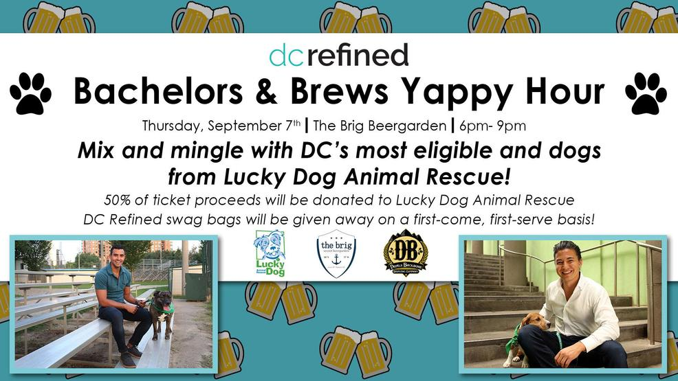 Hang Out With Bachelors And Pups At The Dc Refined Yappy