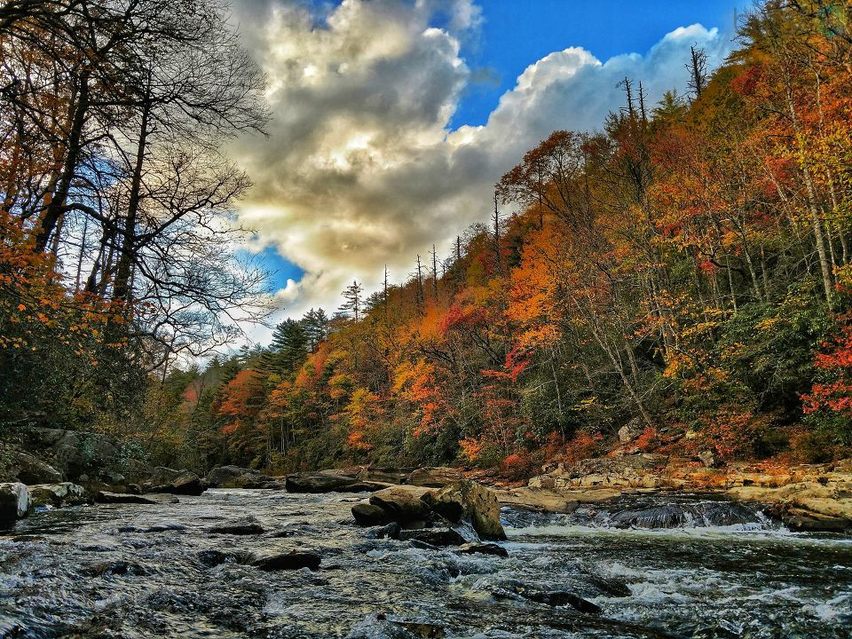 Beautiful shot of fall on the Linville River. Photo: Seth Davis<p></p>