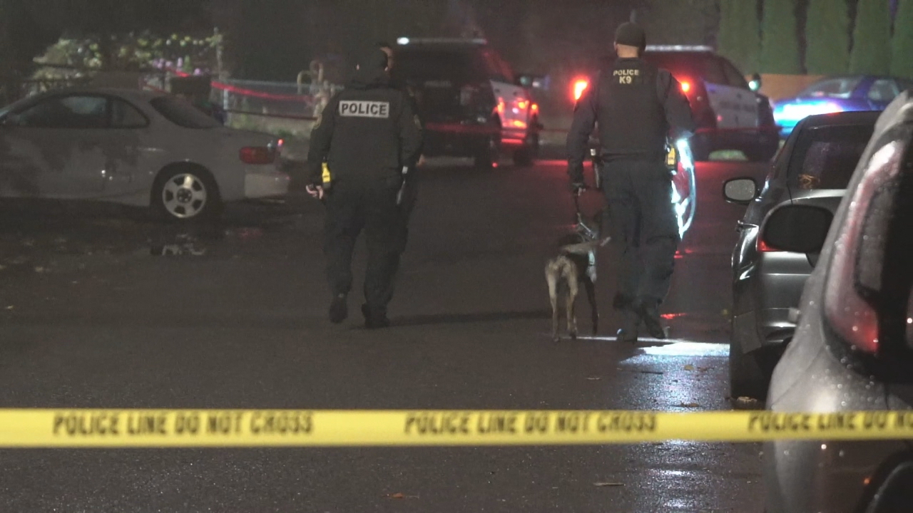 Police responded to reports of a shooting and found a man with fatal injuries in Portland's Lents Neighborhood on Oct. 7, 2018. KATU photo{ }