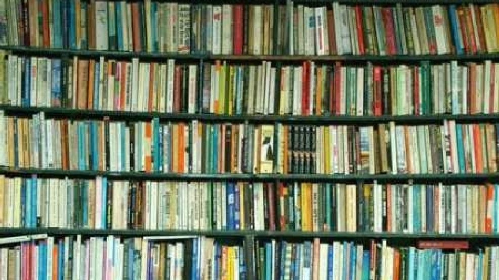 Book Banned From Borger S Intermediate And Middle School Library Kvii