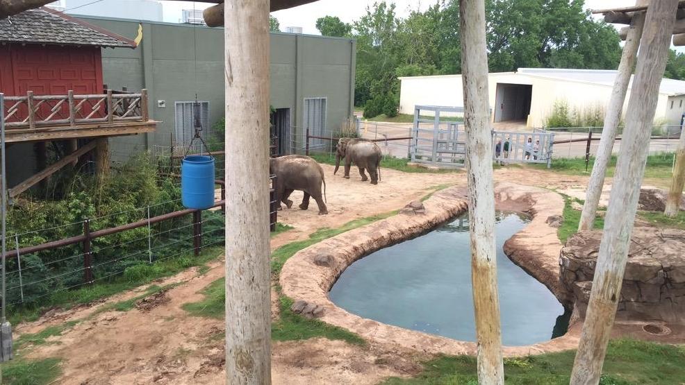 Two elephants from seattle finally arrive at oklahoma city Oklahoma city zoo and botanical garden