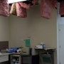 Water heater explodes, causes damage at Doc Williams animal clinic in Goose Creek