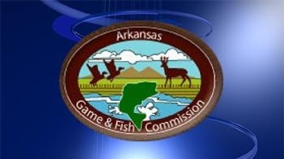 Ar game fish battle feral hogs katv for Arkansas game and fish forecast