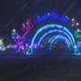 Bonus night of 'Lights on the Lake' raises thousands for good cause