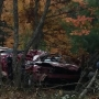 Three killed after vehicle hits deer, crashes into trees