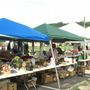 Dixie Highway 90 mile long yard sale happening this weekend
