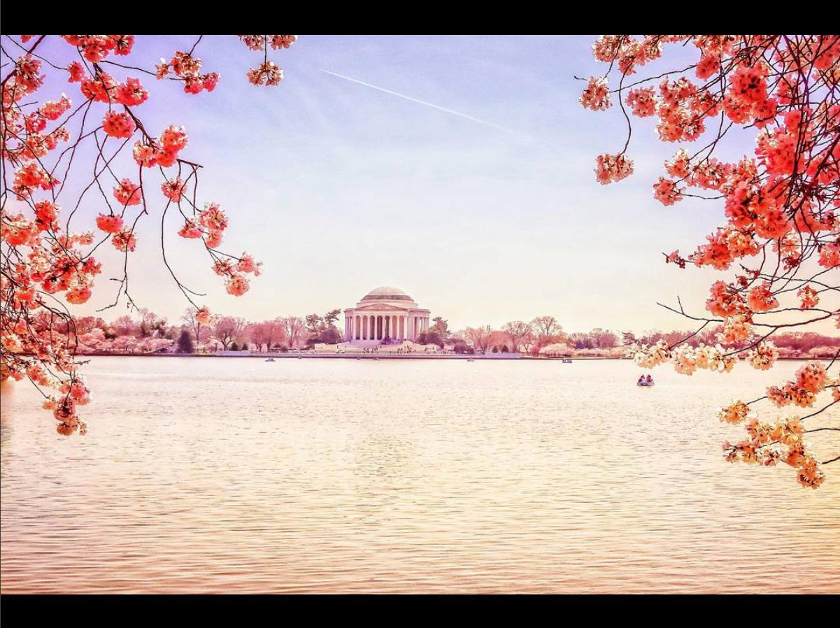 We think D.C. looks great in pink, don't you? (Image via @escapealifetime)