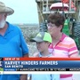 Local cotton farmer may lose millions due to Hurricane Harvey